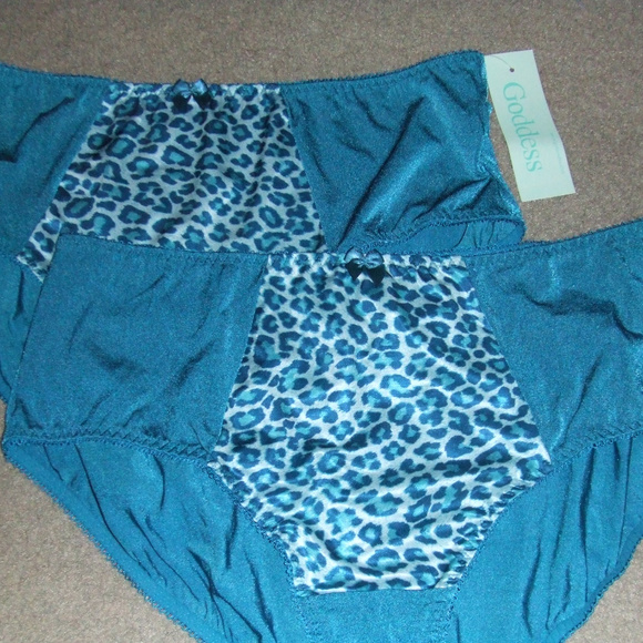 acff9fc8e7be Goddess Intimates & Sleepwear | Kayla Turquoise Panties Size 2x 9 ...